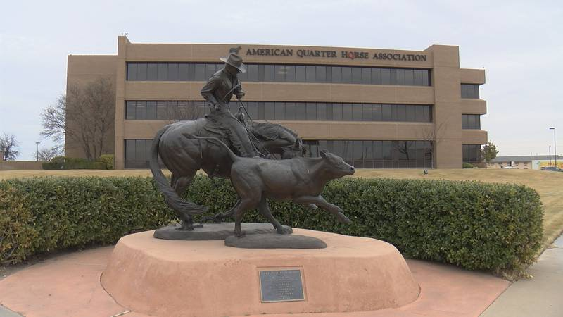 The American Quarter Horse Association is exploring the idea of relocating from Amarillo to...