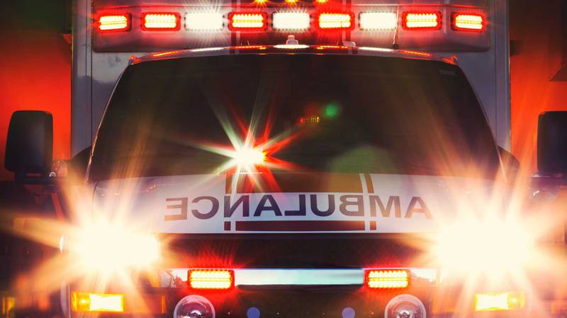 A Canyon man dies from a two vehicle crash on Orla Road near Lea County.