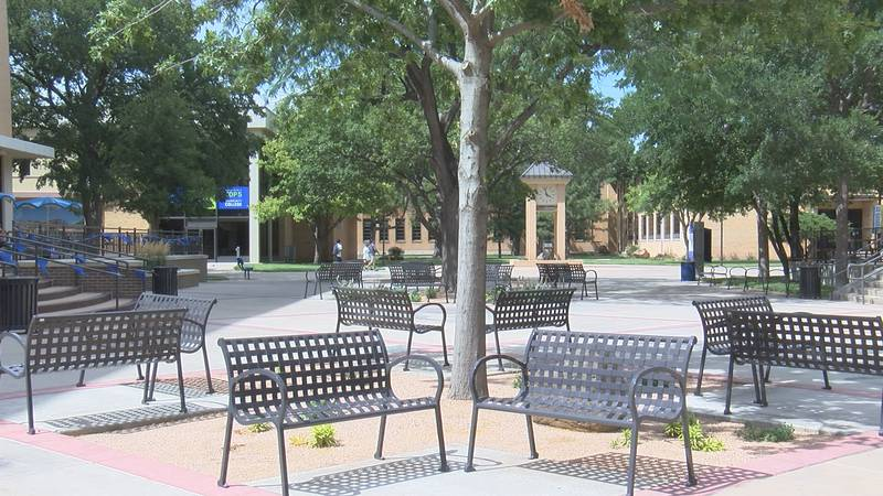 A new digital record-sharing platform coming to the Panhandle will allow students to share...