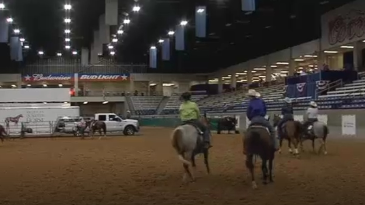 Exhibitors compete in the AQHA Select World Championship, one of several AQHA events in...