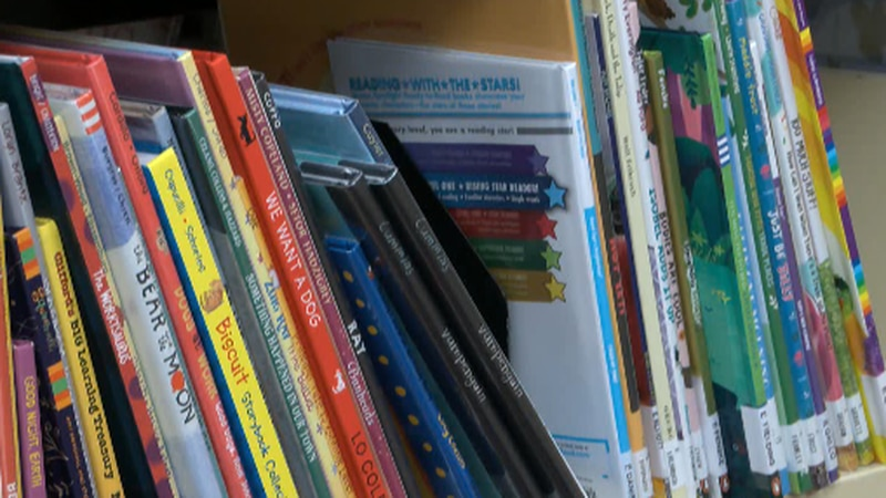 Early literacy plays a vital role in a child's future success.