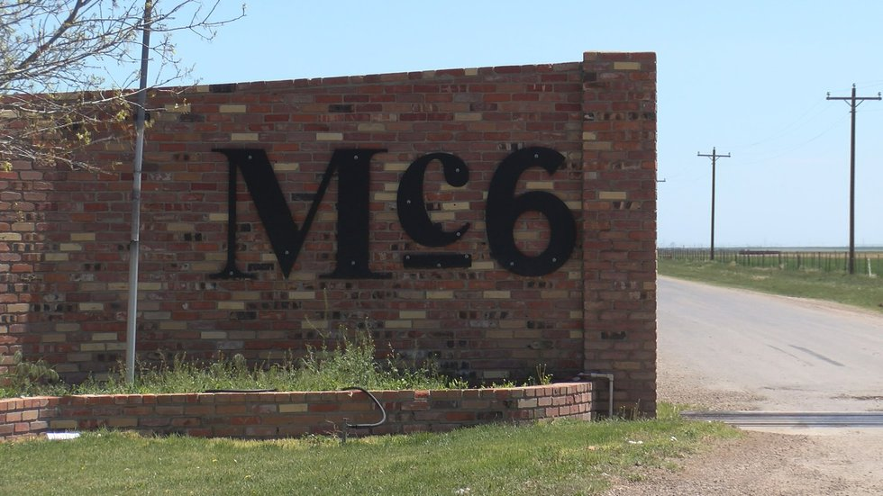 Mc6 Cattle Feeders, Inc. in Hereford is feeding thousands of head of Angus cattle here in the...